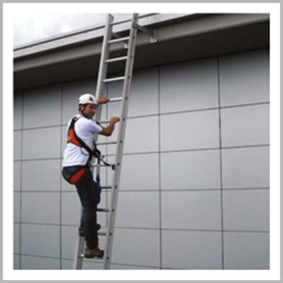 Safe Ladder